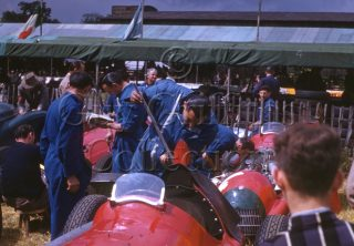 C-3-31–Alfa-Romeo-158–Silverstone–14-07-1951.jpg - Guy Griffiths Collection